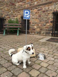 I hope I don't get a parking ticket... JRT Chase