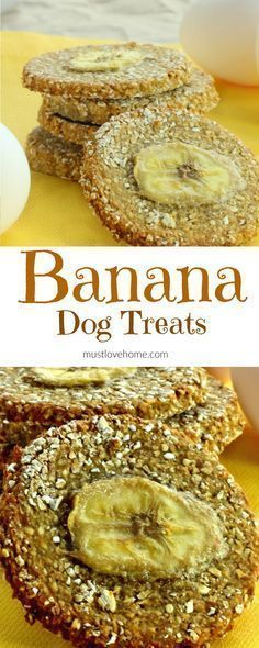 Made with only three ingredients, these easy homemade double Banana Dog Treats will have your furry canine friends begging for more! #Dog