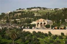 Mount of Olives, Where Jesus Walked