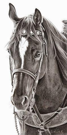 dibujos-a-lapiz-de-caballos-con-jaquima-o-cabezal