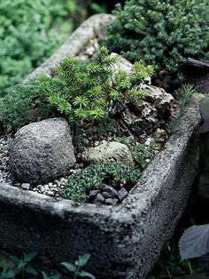 Hypertufa is a fav hobby of mine- always like to learn more!  Great article- Hypertufa make your own planters