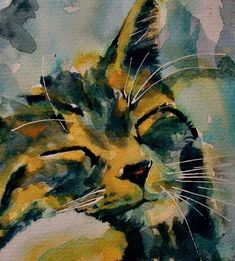 Pintura #CatWatercolor