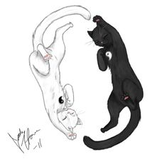 Ying Yang cats by DrawMyLifeAway on DeviantArt Bff Tattoos, Anime Tattoos, Couple Tattoos, Ying Y Yang, Yin Yang Art, Tattoo Sketches, Tattoo Drawings, Tatto Cat, Black Cat Tattoos