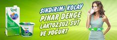 birgülün lezzetleri: Laktozsuz Süt ve Laktozsuz Ürünler Hakkında Her Şe...