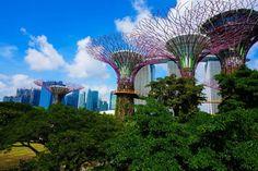 Singapur - Sehenswürdigkeiten, interessante Orte, Highlights und Tipps