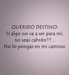 Querido destino...*