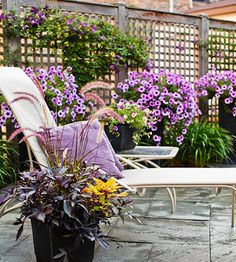 Simple color schemes for plantings and accessories make your patio or deck room serene and beautifully balanced. Here masses of lavender petunias punctuate the planter pots with the color echoed in the climbing clematis on the lattice fence. Lavender tints the  plumes and dark foliage of the potted sweet potato vine beside the chaise. Pillows in the same color accent the seating. The white furniture, weathered gray floor & fencing and green foliage provide neutral foils for the richer hues.