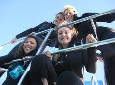 Shark cage dive, Hermanus Bre, Ben, Alex and Savannah