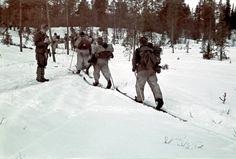 Hiihto-osasto matkalla.  Petsamo, Kukkesjaur 1942.04.14