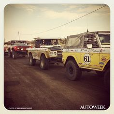 """""""Bronco line-up in La Paz. It was a tight race."""" Exclusive Instagram photos for Autoweek by Melissa Eickhoff. For more on the NORRA Mexican 1000, click on http://mexican1000.com."""