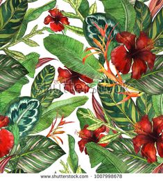 Seamless watercolor pattern with hibiscus, palm leaves, branch of strelitzia, calathea.Tropic background