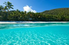 Trunk Bay, St. John, Virgin Islands.  The water is crystal clear and warm.