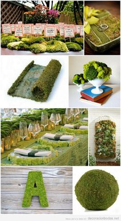 Mossy decorations