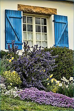 Especially popular during Victorian times, the cottage garden requires an abundance and variety of plants. Similar terms for this type of garden are the country garden or the English garden. Knowing how to create a cottage garden will allow the avid gardener to enjoy a wide variety of plants, both useful and ornamental.