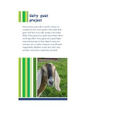 Kansas 4-H Dairy Goat Promotional Brochure - things to learn / do by age of 4Her, project support, cost, leadership opportunity, community service, recognition
