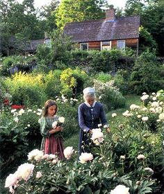 Tasha Tudor garden.  Just look at those peonies!