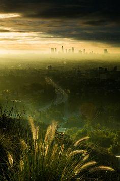 Foggy Downtown LA