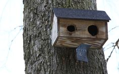 We love the birdhouses outside of Levermore!
