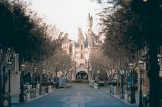 Sleeping Beauty Castle Framed by the Original Street Trees along Main Street, Disneyland, U.S.A.
