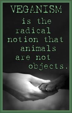 Being Vegan means you love all animals and don't want them to suffer. Factory farms are the worst animal abusers and they kill the food that you eat!