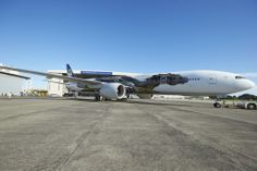 777-300 Hobbit Plane Reveal Featuring Smaug #AirNZHobbit