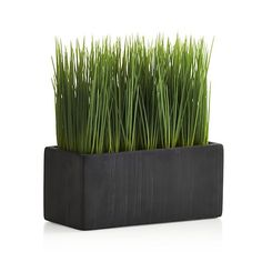 Large Potted Artificial Grass  | Crate and Barrel