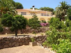 This property is nestled away on the Monchique mountains #Algarve