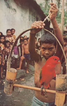 kicker-of-elves:    Tidore, Indonesia    National Geographic  June 1976    Bruce Dale
