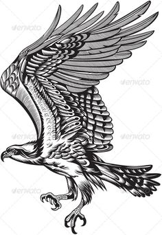 Hawk Wings Tattoo | ... , sign, silhouette, sticker, symbol, tattoo, vector, white, wing