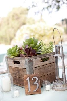 rustic but neutral with the succulents. maybe do babies breath at a couple tables, succulents at a few, and then colorful pretty flowers at a couple! Succulent Wedding Centerpieces, Modern Centerpieces, Masculine Centerpieces, Centerpiece Ideas, Milk Crates, Wooden Crates, Wooden Boxes, Diy Wedding Gifts, Wedding Table