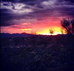 #Westwardlook has one of the best views in  #Tucson #Arizona    (Photo-@amrsweetpea)