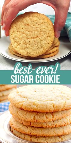Cookie Recipes 149674387603572952 - Absolutely The Best Sugar Cookie Recipe EVER! This recipe makes BIG, round, soft and chewy sugar cookies, just like bakery style cookies. Source by BunnysWarmOven Chocolate Chip Cookies, Chewy Sugar Cookies, Best Sugar Cookies, Crunchy Cookies Recipe, Delicious Cookies, Cupcakes, Best Sugar Cookie Recipe, School Cookie Recipe, One Big Cookie Recipe