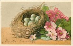 EASTER GREETINGS  six eggs in birds nest, many pink polyanthus right Free freebie printable vintage Easter postcard by Raphael Tuck Co.