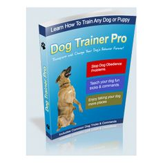 Dog Training School, Dog Training Classes, Dog Training Videos, Training Your Dog, Sick Dog, Guide Dog, Dog Hacks, Old Dogs, Dog Behavior