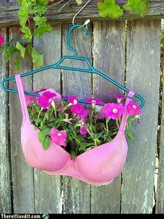 Wonder if the condo board would mind this plant hanger..........giggle!