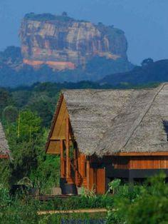 Vue sur Vil Uyana depuis son hotel, Sri Lanka