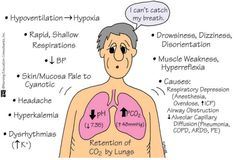 Respiratory Acidosis and Alkalosis - Bing images Acidosis And Alkalosis, Respiratory Alkalosis, Respiratory Therapy, Metabolic Acidosis, Respiratory System, Acute Respiratory Failure, Nursing School Tips, Nursing Notes, Nursing Schools
