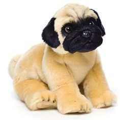 Lifelike Stuffed Pug Puppy by Nat and Jules - Pug Puppies Pug Puppies, Chihuahua, Pugs, Pug Dogs, Doggies, Yorkshire Terrier, Small Pug, Real Dog, Training Your Dog