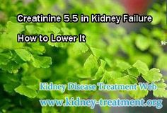 Creatinine 5.5 in kidney failure how to lower it ? In clinic, creatinine level 5.5 is in stage 4, without effective treatment, it will slip into end stage renal disease rapidly, so that demand the patient to take treatment timely. Then is there any ways can lower the high creatinine level ?