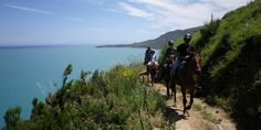 horse back riding in sicilly looks awesome.   Roughly like £40