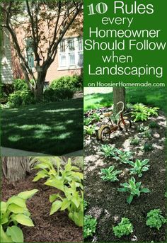 10 Rules Every Homeowner Should Follow when Landscaping | on HoosierHomemade.com