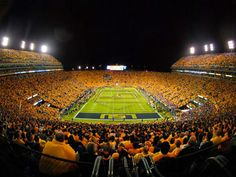 Just about the most important thing on my bucket list. Go to a football game in LSU stadium!!