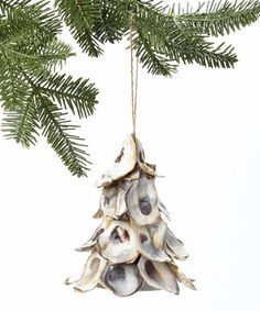 Another great find on #zulily! Oyster Shell Tree Ornament #zulilyfinds