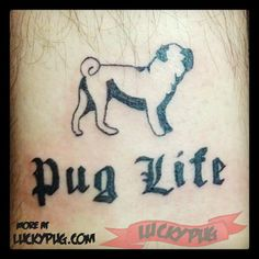 Pug Life - Leg Pug Tattoo, Submitted by @artbyrivas, USA