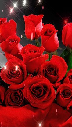 Beautiful Love Pictures, Beautiful Flowers Images, Beautiful Flowers Wallpapers, Beautiful Red Roses, Beautiful Gif, Flower Images, Rose Flower Wallpaper, Flowers Gif, Glitter Flowers
