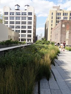 High Line (Piet Oudolf) - Manhattan NY