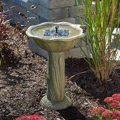 Birdbath - A Collection by Anglina - Favorave