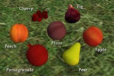 Several of these fruits are grown in the Middle East, such as the cherries, figs, peaches, and pomegranates.