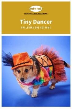 Dress up your furry pal as a ballerina this Halloween! // Project Tutorial to create this fun and cute pet-friendly Halloween costume available through the link.
