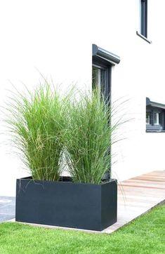 Back Gardens, Small Gardens, Outdoor Gardens, Modern Gardens, Modern Garden Design, Landscape Design, Contemporary Garden, Garden Planters, Garden Beds